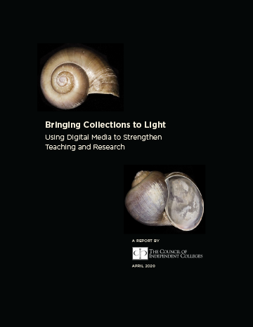 New Report Showcases How Campuses Can 'Bring Collections to Light'